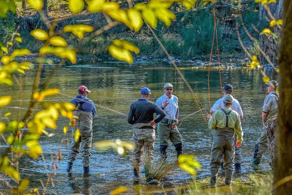 Fly Fishing on the Nepean River