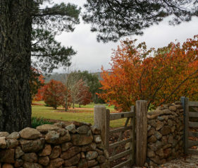 Jigsaw Puzzle Rustic Gate and Autumn Leaves in Blue Mountains