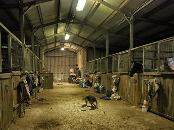 Country Racing Stables - an iconic part of the racing industry