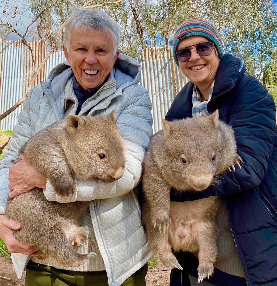 Walking Wombats are on our way!